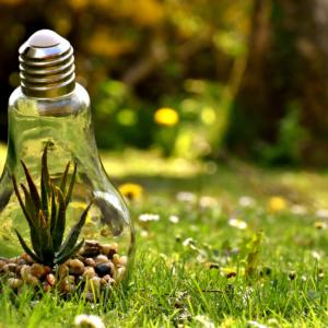 Descarbonización: hidrógeno verde